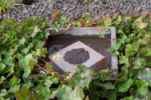 sten vatten murgröna fågelbad